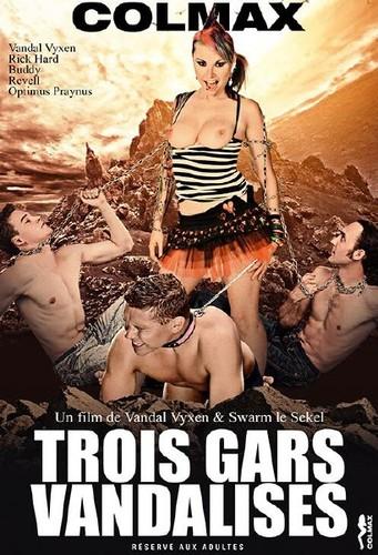 Trois Gars Vandalises (2014) WEBRip - 720p